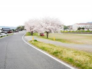 ashimori_kasen_004