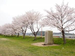 ashimori_kasen_007