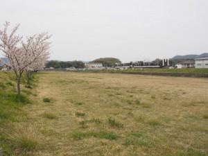 ashimori_kasen_012
