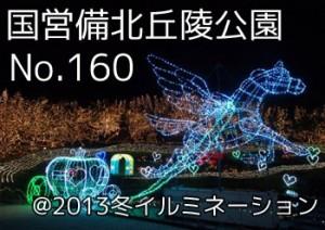 bihoku_kyuryo_illumi2013_00