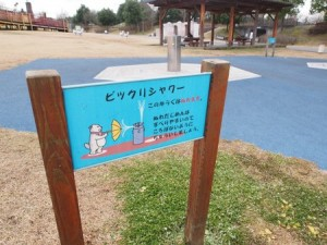 bioku_kyuryo_049