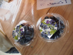 blueberry_nihsida_024