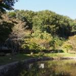 hayashima_fureai_041