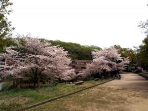 higashiyama_101