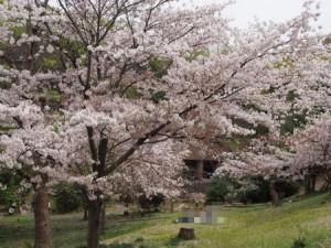 higashiyama_102
