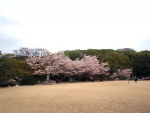 higashiyama_103