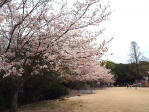 higashiyama_104