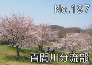 hyakengawa_bunryu_000