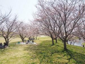 hyakengawa_bunryu_011
