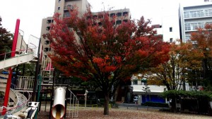 ingress_okayama_023