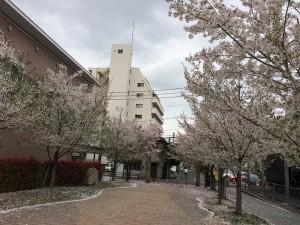 ingress_okayama_080