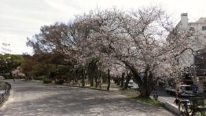 ishiyama_003