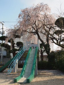 kamiifuku_026