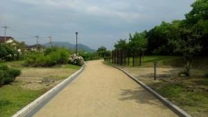 kasaoka_jyuichiban_037