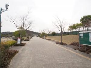 kasaoka_kodai_sports_033