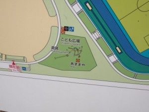 kasaoka_sports_003