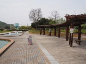 kasaoka_taiyo_013
