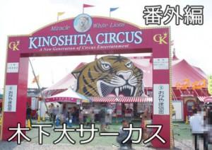 kinoshita_okayama2014_000