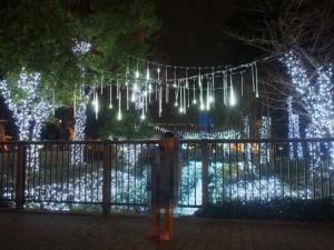 kurashiki_mirai_2015fuyuirumi_016