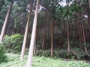 kuroki_camp_020