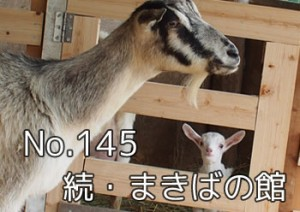 makibano_yakata_088