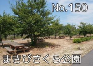 makibi_sakura_000