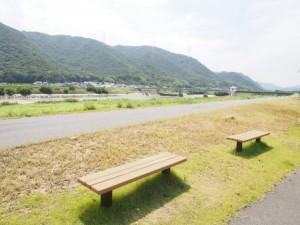 makibi_sakura_011