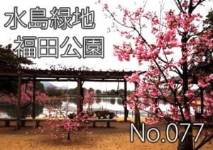 mizu_fukuda_000