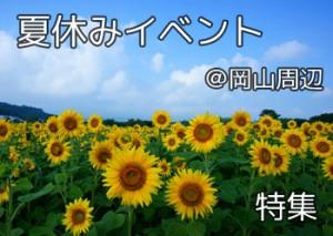 natuyasumi_event_000