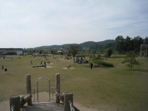 芝生の広場はとにかく広い