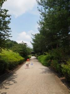 north_village_022
