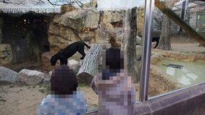 oji_zoo_047