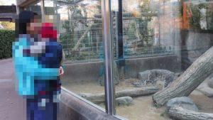 oji_zoo_048