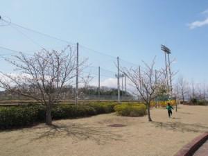 oku_sports_016