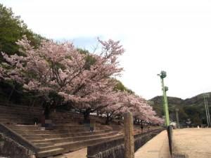 okuichi_005