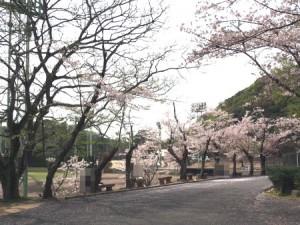 okuichi_013