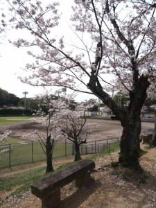 okuichi_014