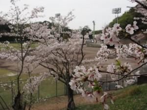 okuichi_020