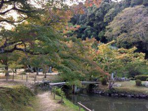omizuen_ashimori_021