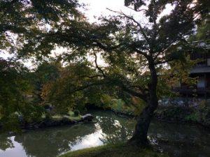 omizuen_ashimori_026