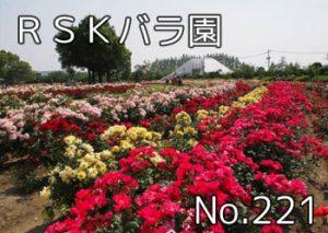 rskbara_000