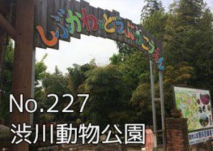 shibukawa_doubutsu_000