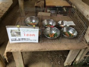 shibukawa_doubutsu_023