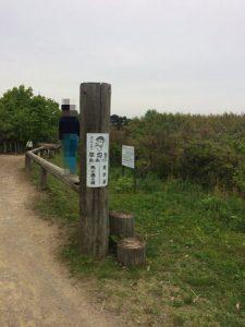 shibukawa_doubutsu_078