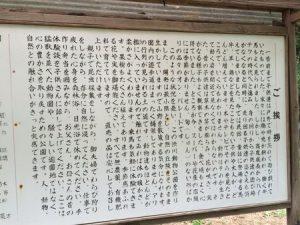 shibukawa_doubutsu_090