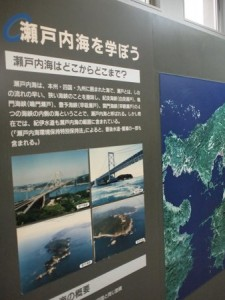 shibukawa_marin_051