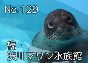 shibukawa_marin_099