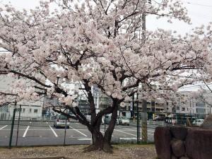 takayanagi_dai2_008