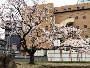 takayanagi_dai2_009