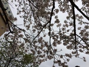 takayanagi_dai2_013